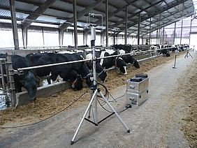 Field measurements in a dairy barn (Photo: ATB)